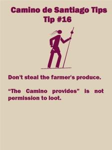 Camino Tips 16